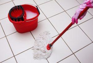 мытьё полов от блох