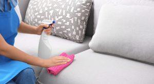 Бытовая химия для чистки белого светлого дивана