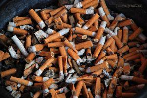 Окурки от сигарет