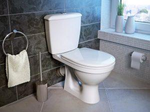Что делать, если забился унитаз туалетной бумагой